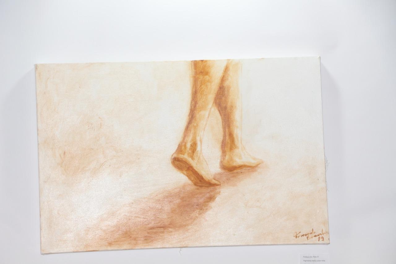 Artista Plástico Fernando Bernardes,
